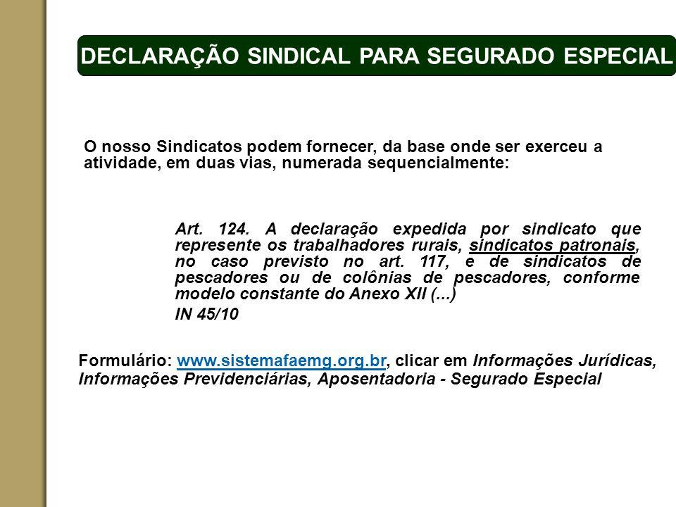 DECLARAÇÃO SINDICAL PARA SEGURADO ESPECIAL