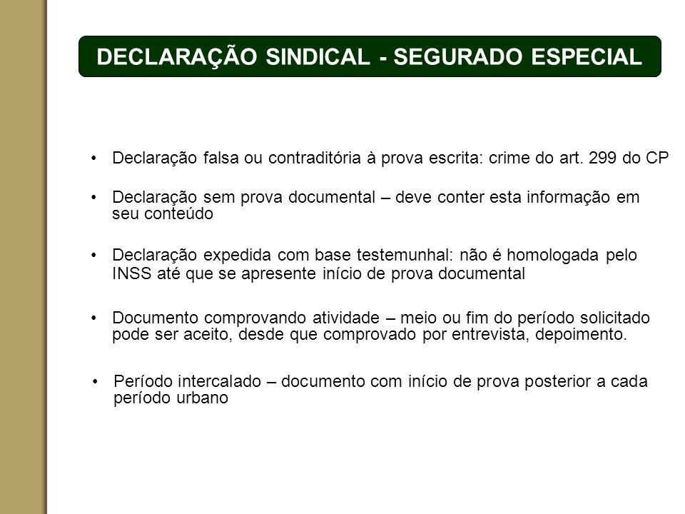 DECLARAÇÃO SINDICAL - SEGURADO ESPECIAL