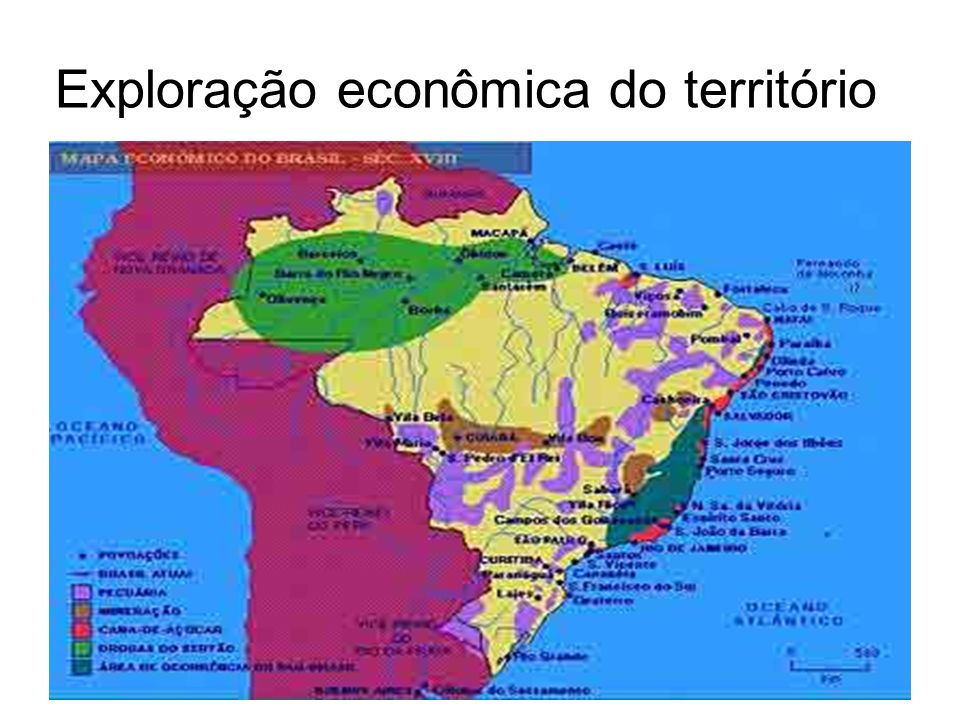 Exploração econômica do território
