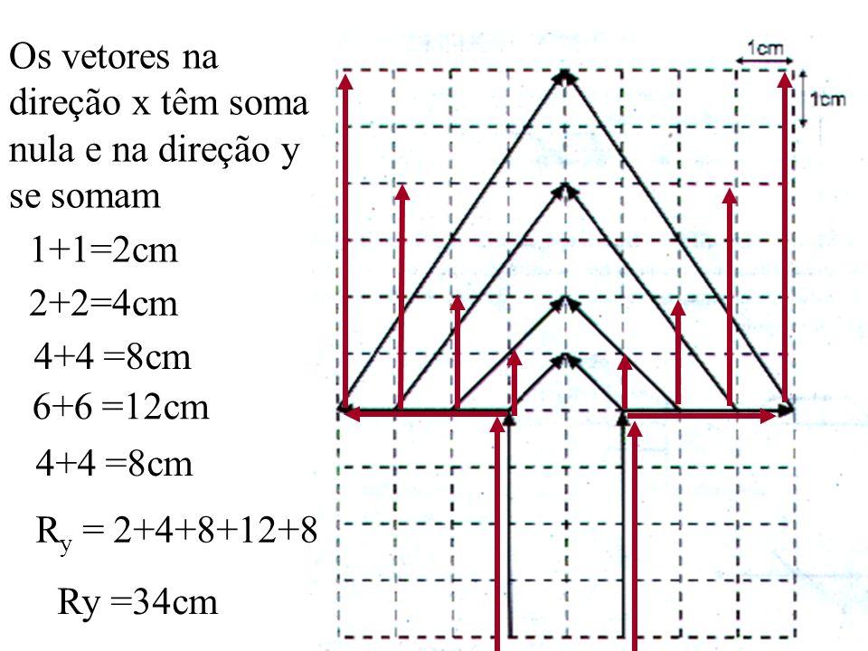 Os vetores na direção x têm soma nula e na direção y se somam