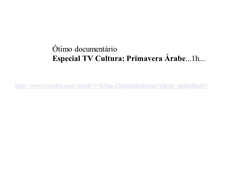 Especial TV Cultura: Primavera Árabe...1h...
