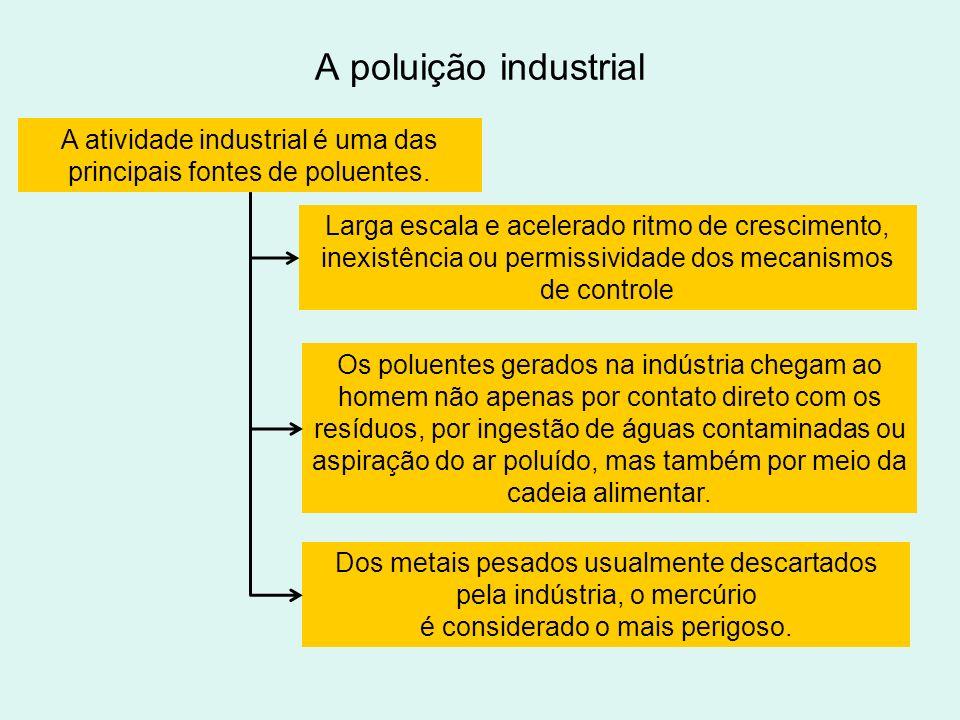 A atividade industrial é uma das principais fontes de poluentes.
