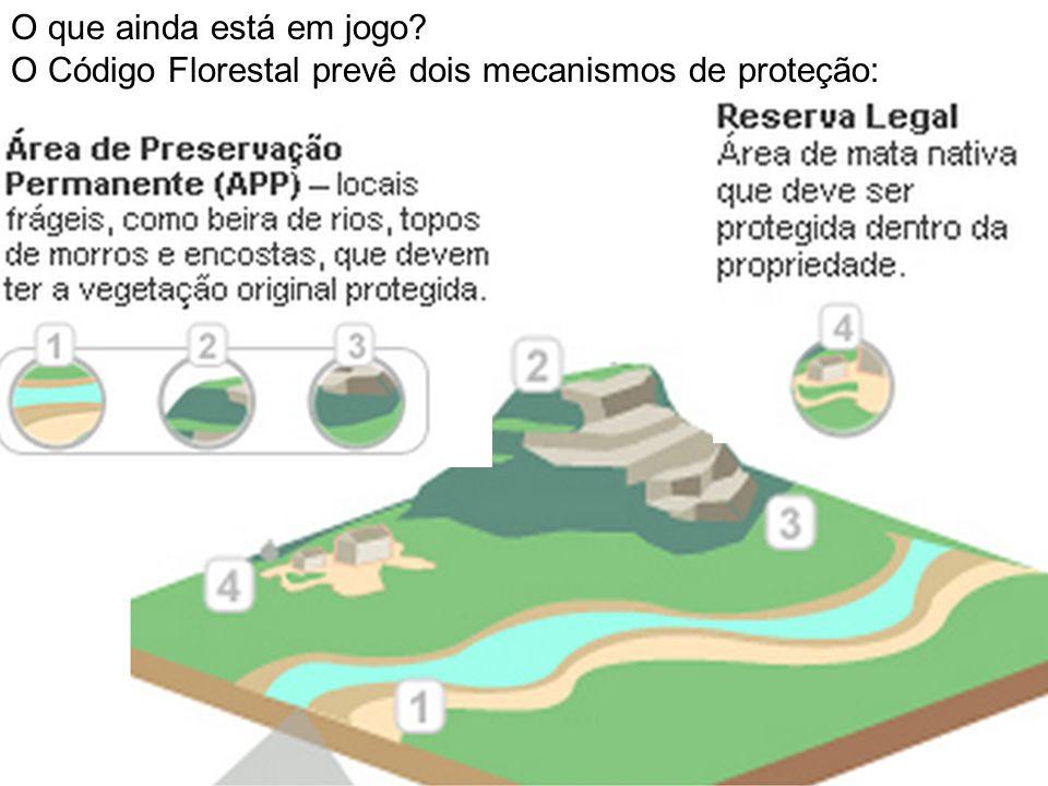 O que ainda está em jogo O Código Florestal prevê dois mecanismos de proteção: