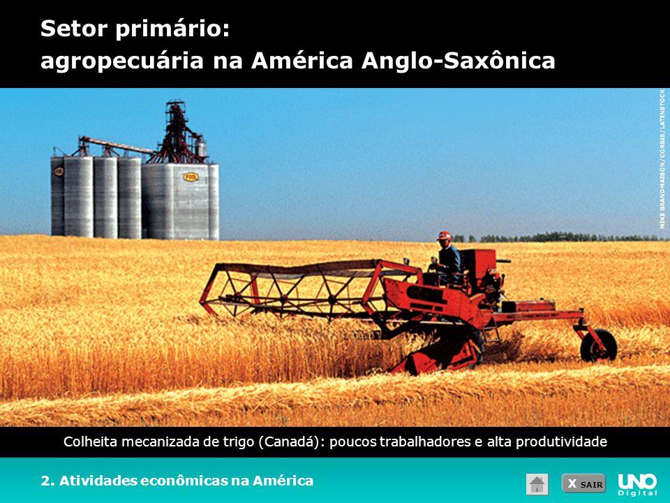 Setor primário: agropecuária na América Anglo-Saxônica