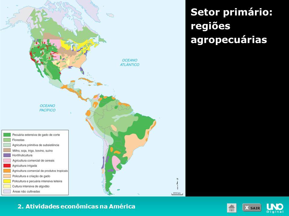 Setor primário: regiões agropecuárias