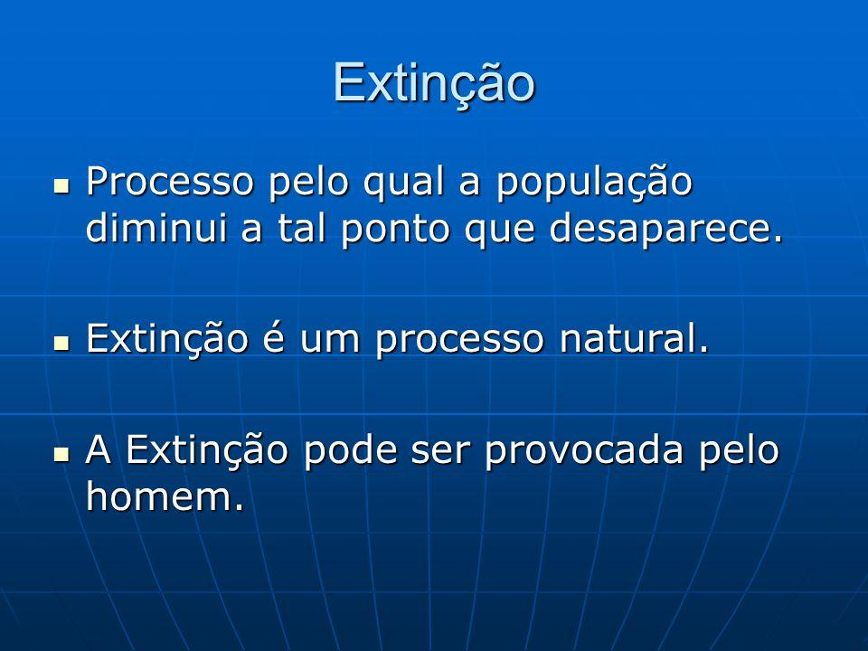 Extinção Processo pelo qual a população diminui a tal ponto que desaparece. Extinção é um processo natural.