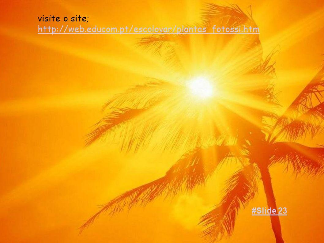 visite o site; http://web.educom.pt/escolovar/plantas_fotossi.htm