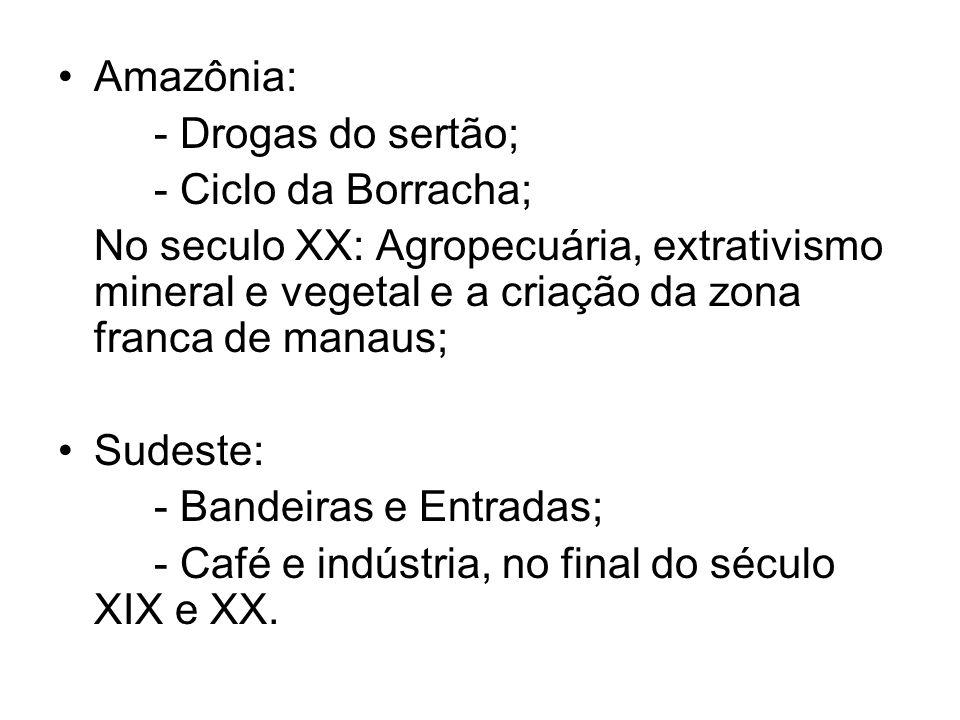 Amazônia: - Drogas do sertão; - Ciclo da Borracha; No seculo XX: Agropecuária, extrativismo mineral e vegetal e a criação da zona franca de manaus;