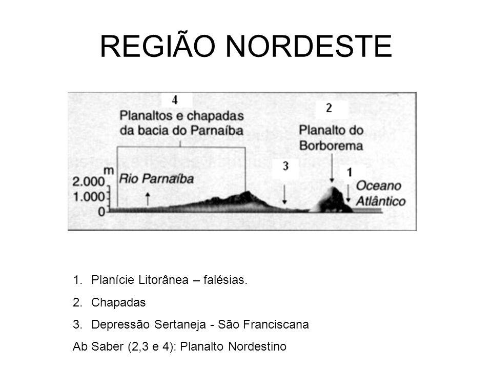 REGIÃO NORDESTE Planície Litorânea – falésias. Chapadas