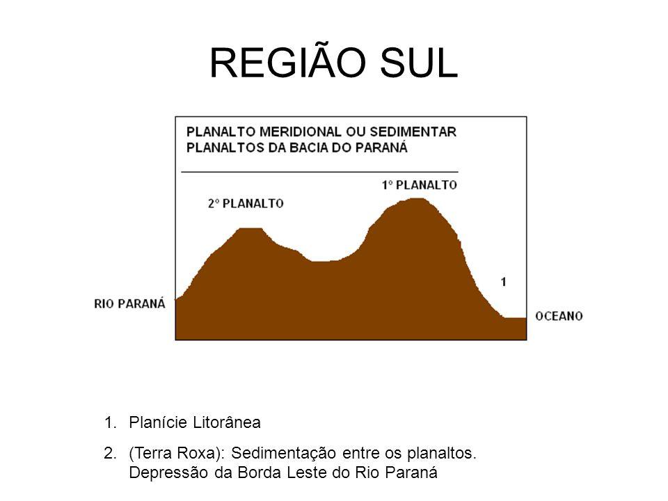 REGIÃO SUL Planície Litorânea