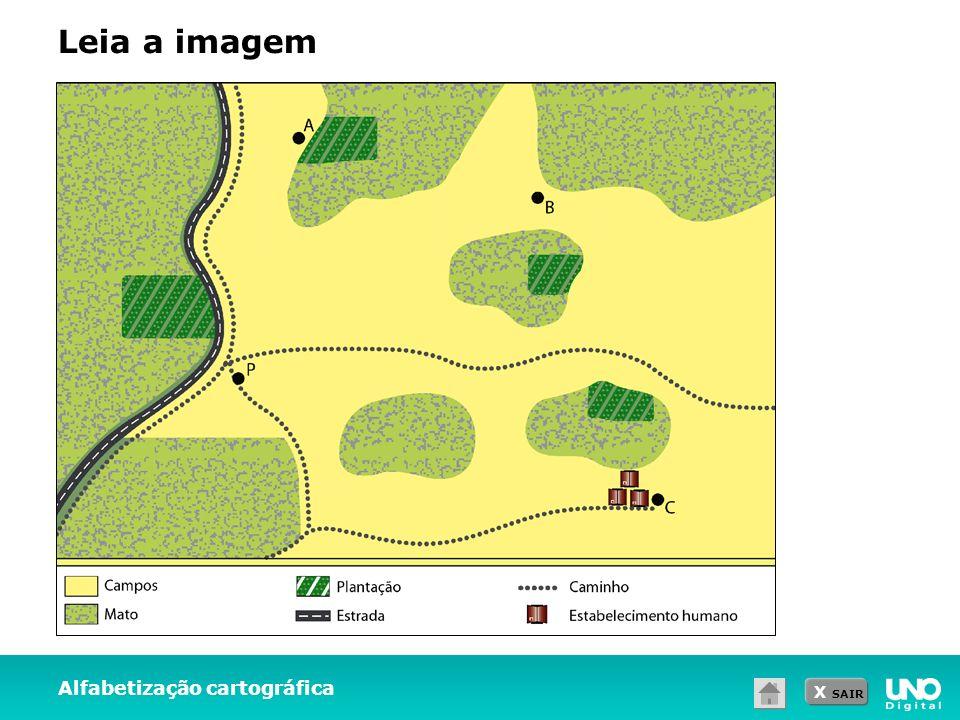 Leia a imagem Alfabetização cartográfica