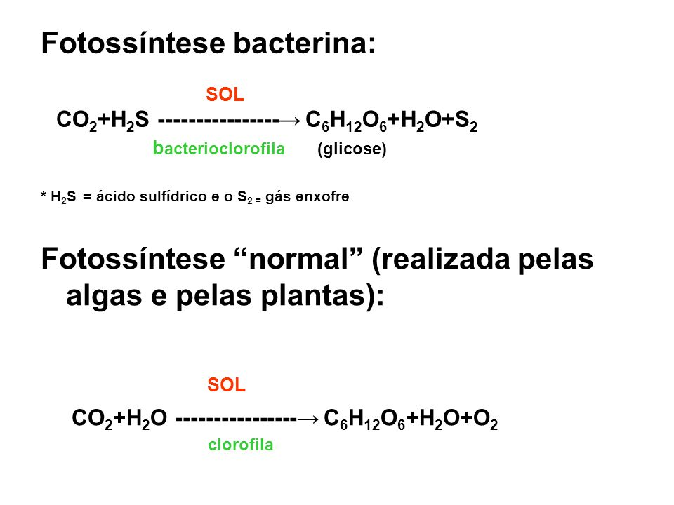 Fotossíntese normal (realizada pelas algas e pelas plantas):