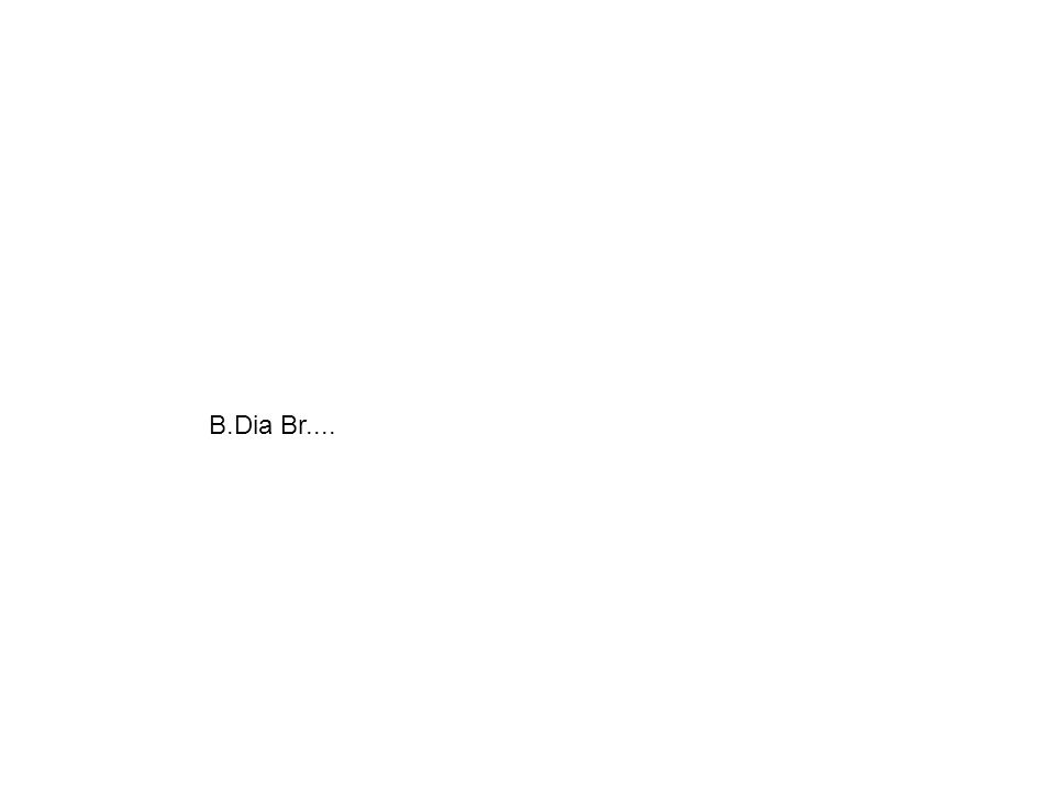 B.Dia Br....