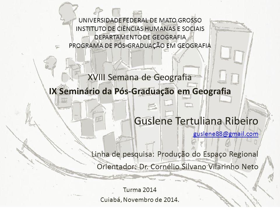 IX Seminário da Pós-Graduação em Geografia