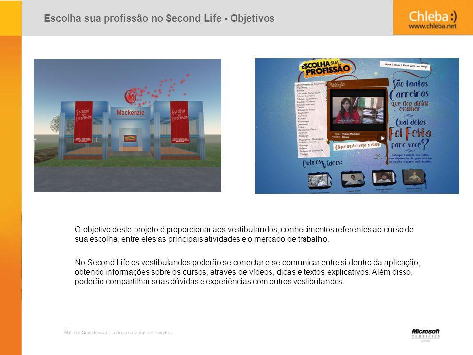 Escolha sua profissão no Second Life - Objetivos
