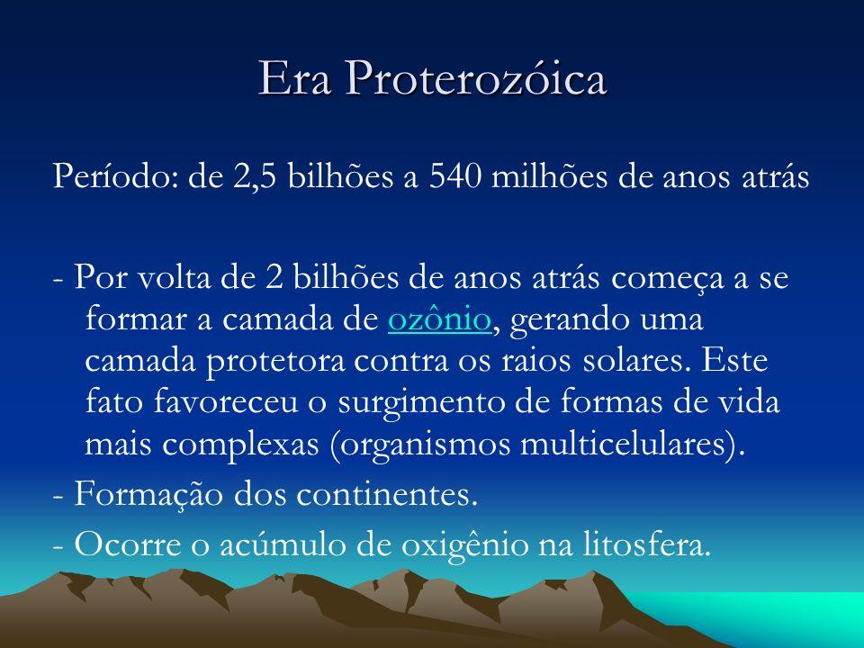 Era Proterozóica Período: de 2,5 bilhões a 540 milhões de anos atrás
