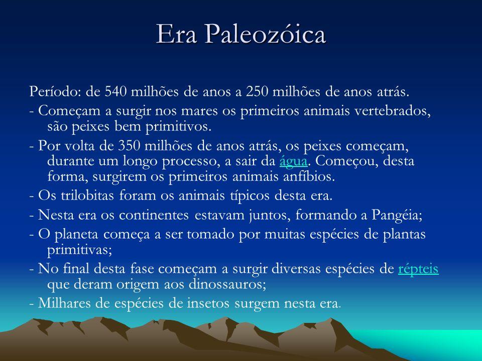 Era Paleozóica Período: de 540 milhões de anos a 250 milhões de anos atrás.
