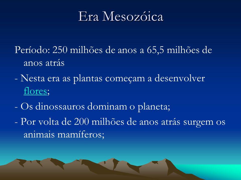 Era Mesozóica Período: 250 milhões de anos a 65,5 milhões de anos atrás. - Nesta era as plantas começam a desenvolver flores;