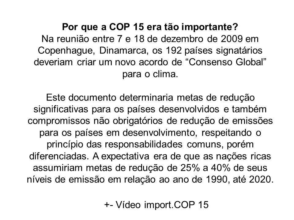 Por que a COP 15 era tão importante