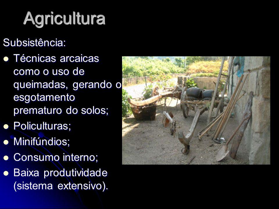 Agricultura Subsistência: