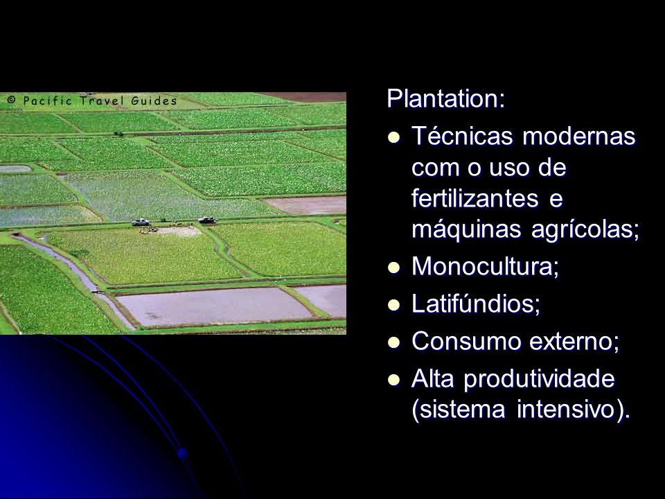 Plantation:Técnicas modernas com o uso de fertilizantes e máquinas agrícolas; Monocultura; Latifúndios;