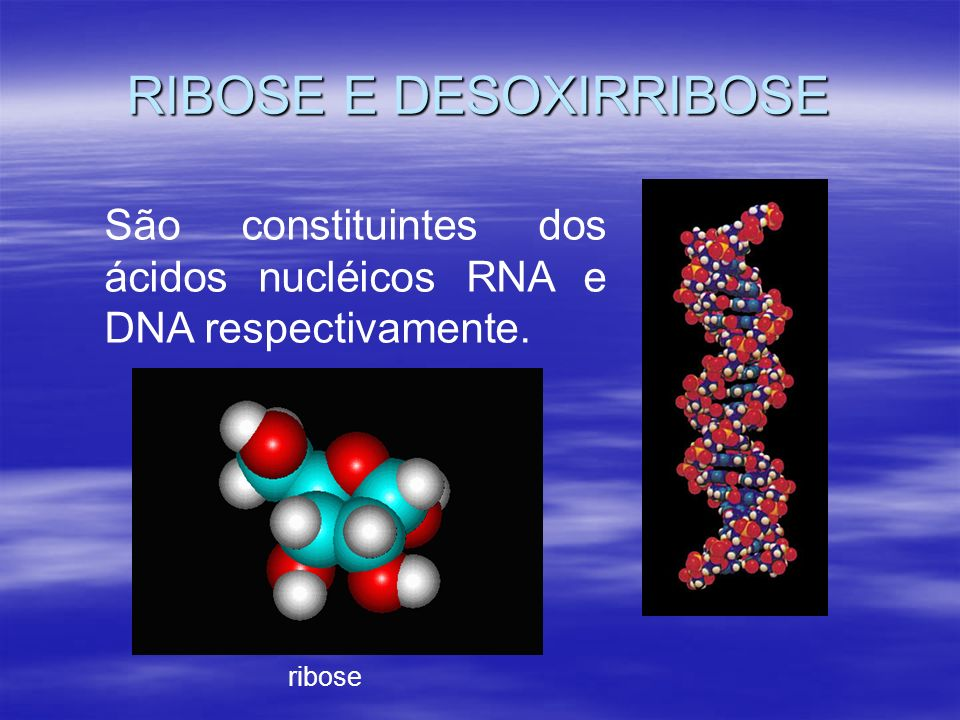 RIBOSE E DESOXIRRIBOSE