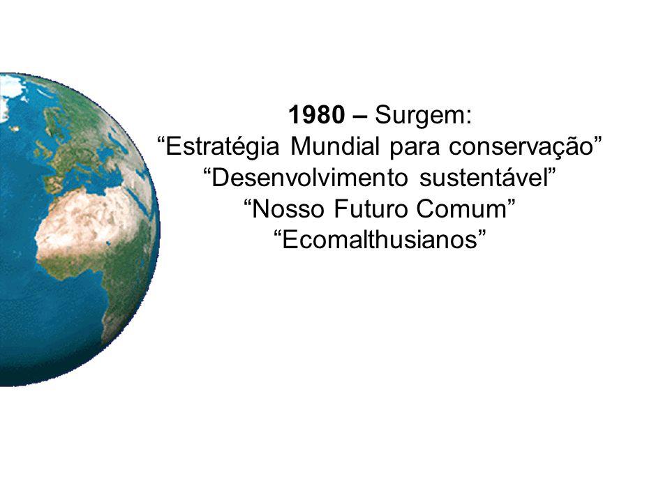 Estratégia Mundial para conservação Desenvolvimento sustentável