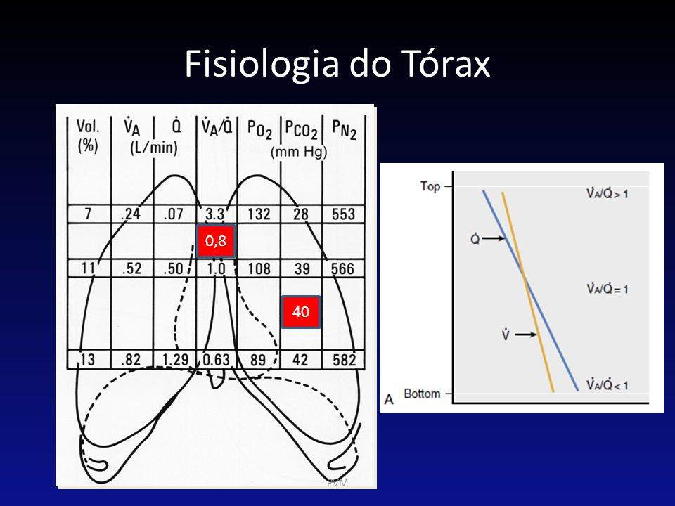 Fisiologia do Tórax 0,8 40 PVM