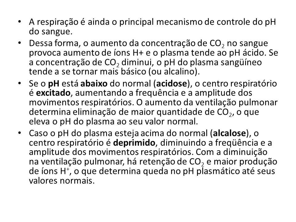 A respiração é ainda o principal mecanismo de controle do pH do sangue.