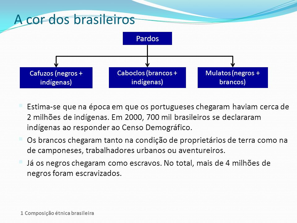 A cor dos brasileiros Pardos. Cafuzos (negros + indígenas) Caboclos (brancos + indígenas) Mulatos (negros + brancos)