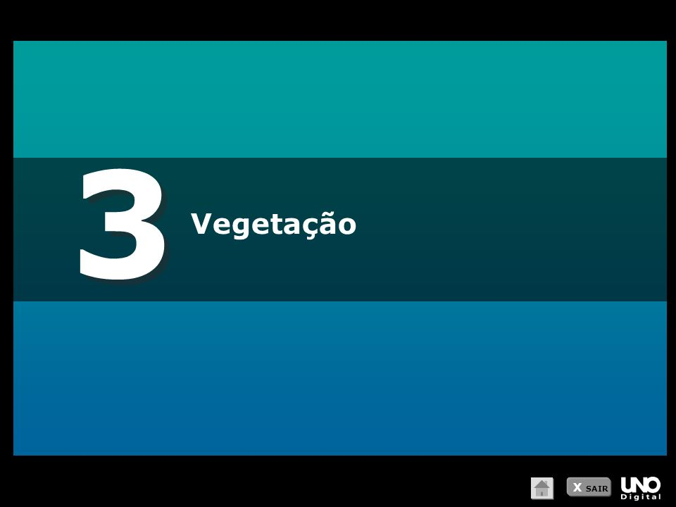 3 Vegetação X SAIR