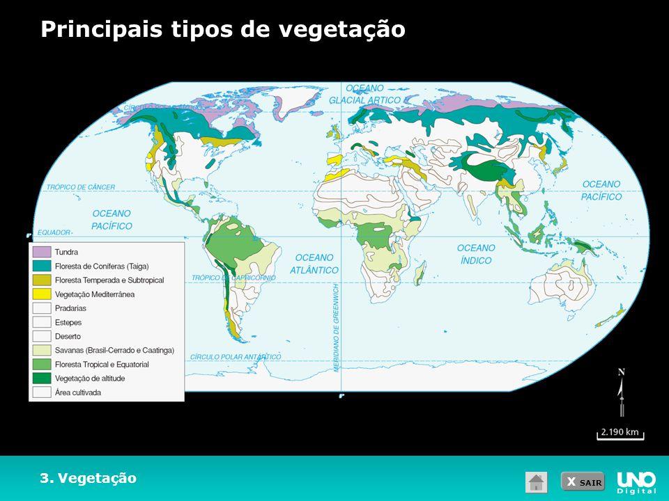 Principais tipos de vegetação