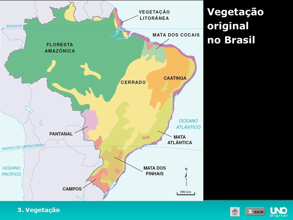 Vegetação original no Brasil