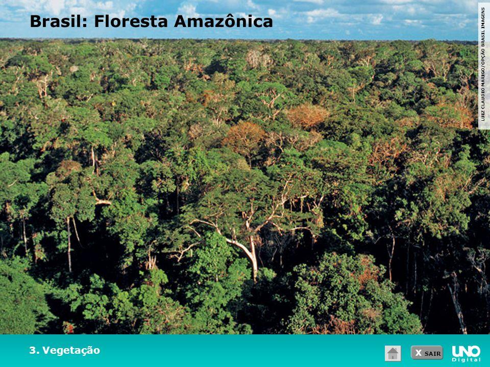 Brasil: Floresta Amazônica