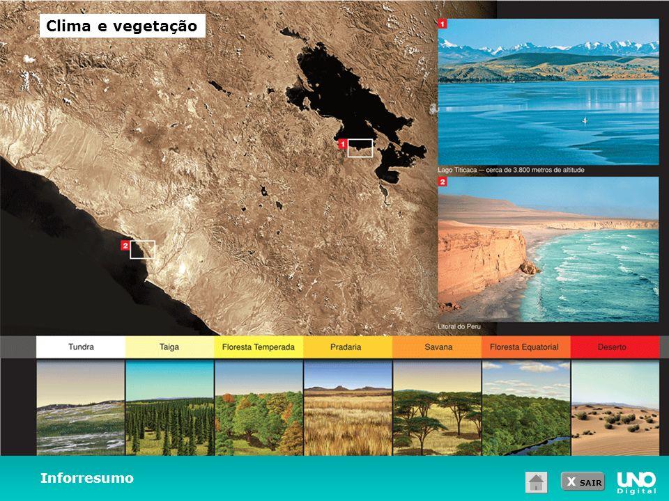 Clima e vegetação Inforresumo