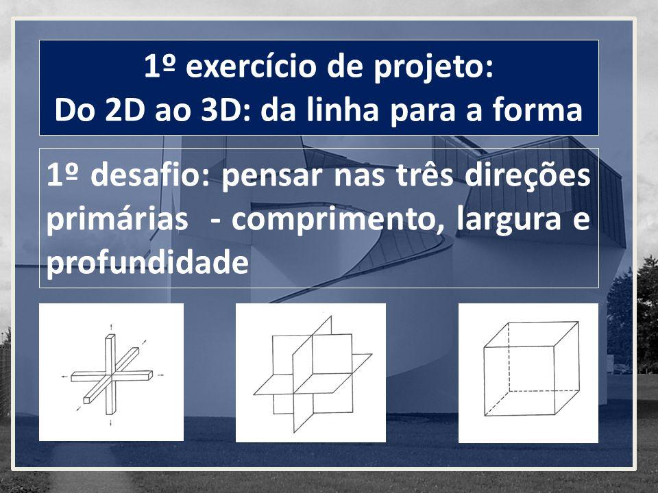 1º exercício de projeto: Do 2D ao 3D: da linha para a forma