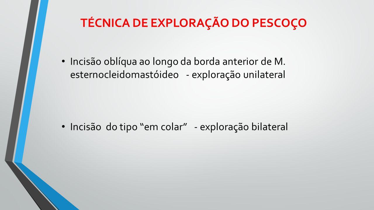 TÉCNICA DE EXPLORAÇÃO DO PESCOÇO