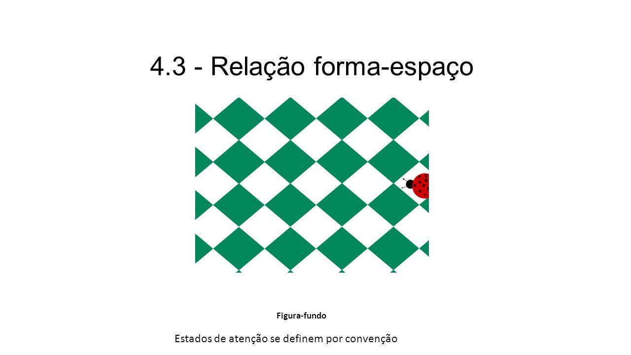 4.3 - Relação forma-espaço