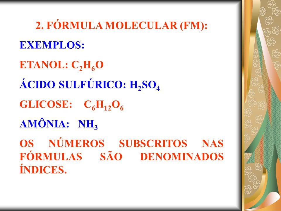2. FÓRMULA MOLECULAR (FM):