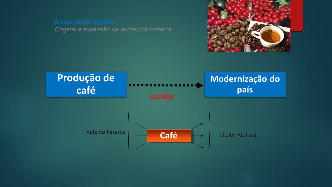 Produção de café Modernização do país Café LUCROS A economia cafeeira