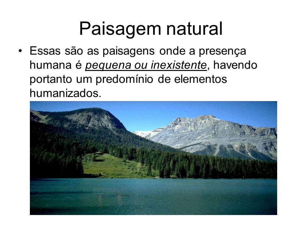 Paisagem naturalEssas são as paisagens onde a presença humana é pequena ou inexistente, havendo portanto um predomínio de elementos humanizados.