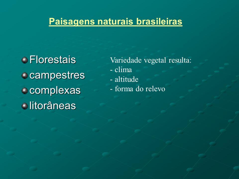Paisagens naturais brasileiras