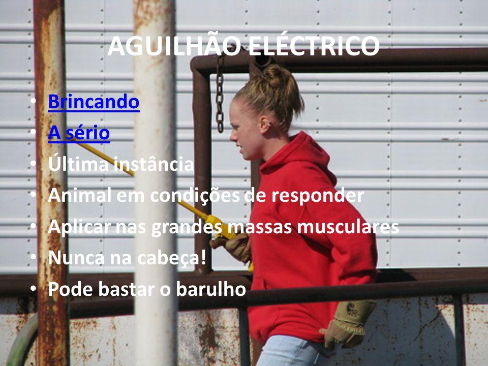 AGUILHÃO ELÉCTRICO Brincando A sério Última instância