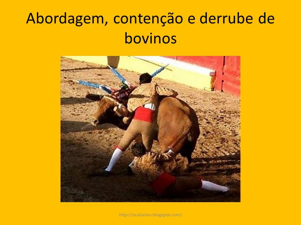 Abordagem, contenção e derrube de bovinos