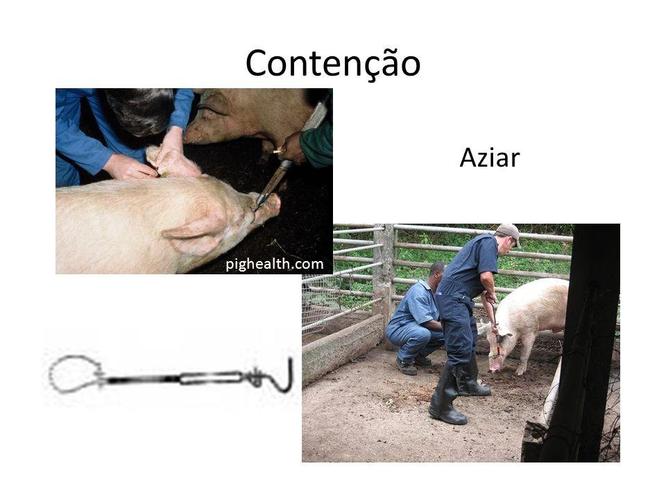 Contenção Aziar pighealth.com