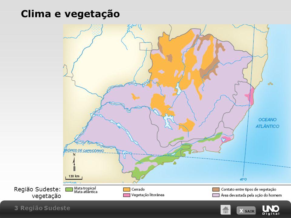 Clima e vegetação Região Sudeste: vegetação 3 Região Sudeste