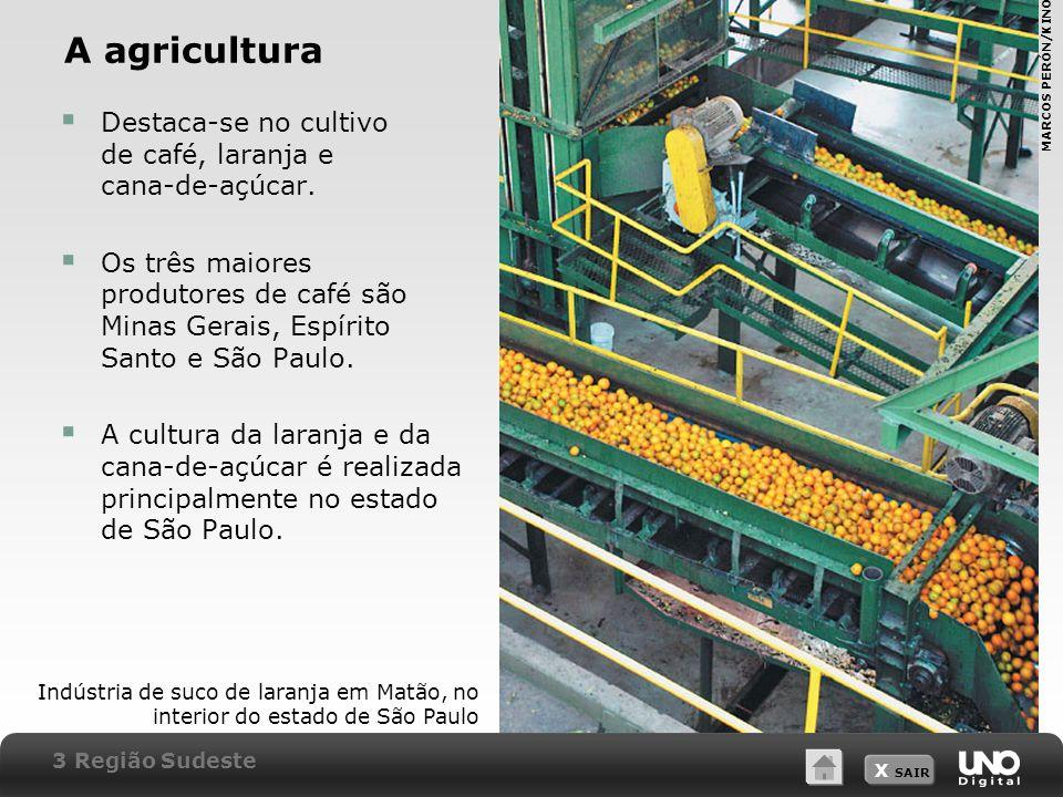 A agricultura Destaca-se no cultivo de café, laranja e cana-de-açúcar.