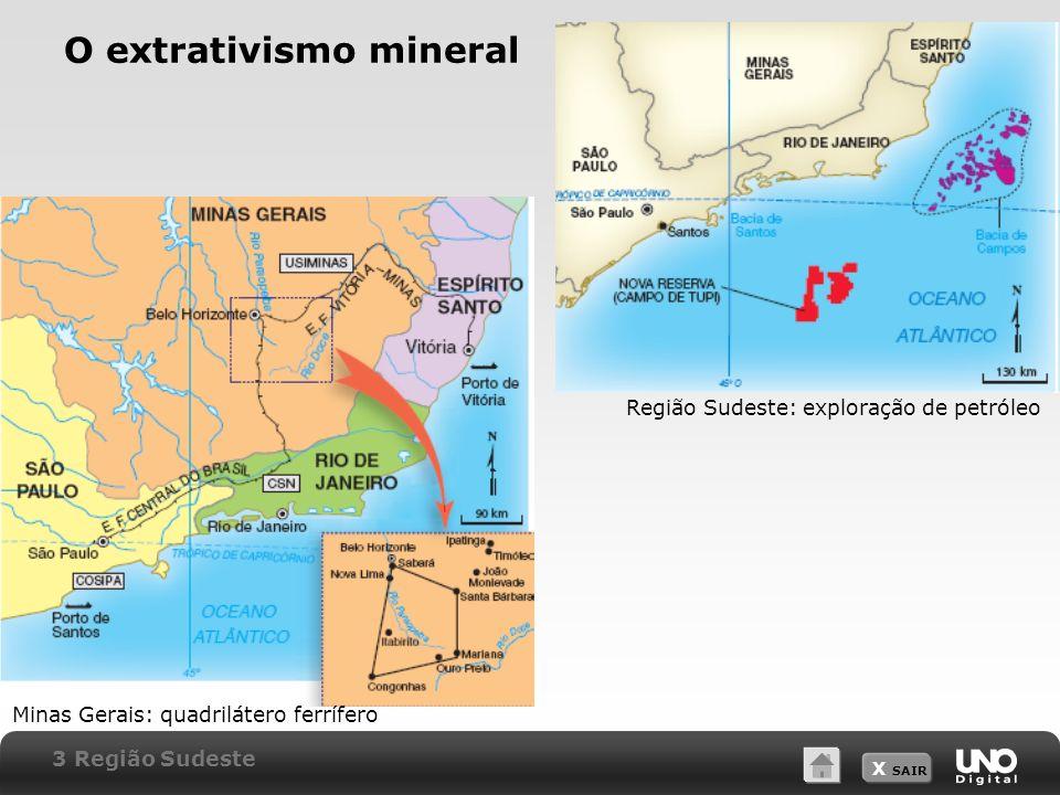 O extrativismo mineral