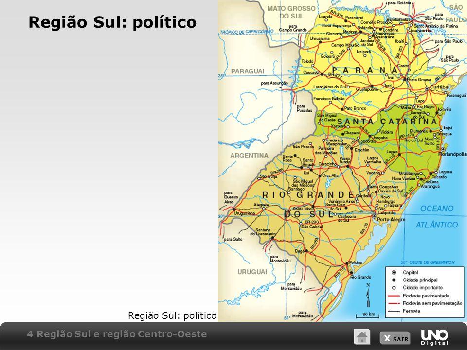 Região Sul: político Região Sul: político