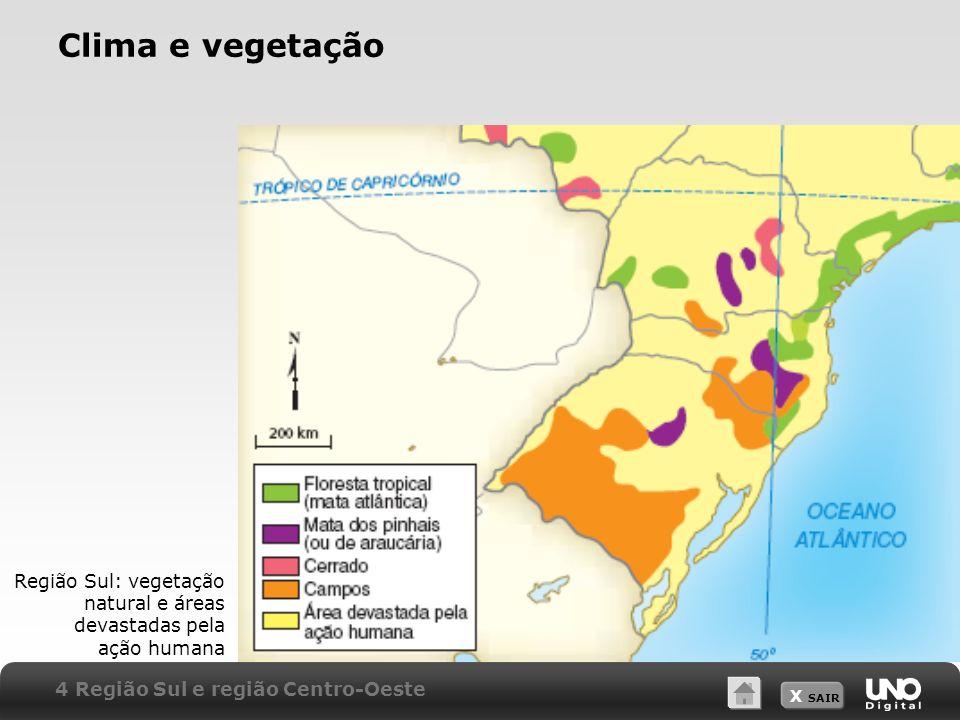 Clima e vegetaçãoProfessor: a escala indicada se refere ao mapa impresso no módulo.